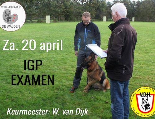 Za. 20 april 2019; IGP examen (keurmeester; W. van Dijk)