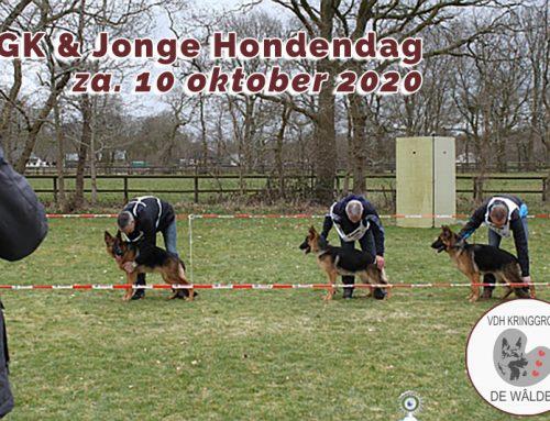 FGK & Jonge hondendag Za. 10 oktober