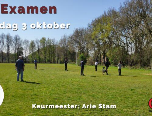 Za. 3 oktober 2020; IGP examen (keurmeester; Arie Stam)